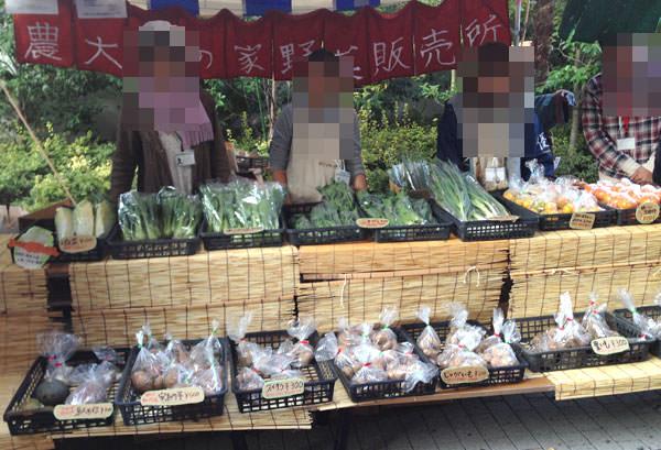 野菜販売模擬店